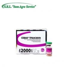 CEVAC® TRANSMUNE IBD