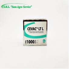 CEVAC LT L